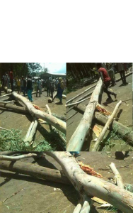 #OromoProtests, Baddeessaa, Hararghe, Oromia 2nd August 2016