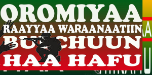 #OromoProtests, #GrandOromiaProtests, 6 August 2016, all over Oromia. Dhaadannoo. p115