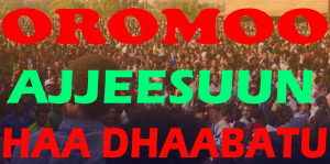 #OromoProtests, #GrandOromiaProtests, 6 August 2016, all over Oromia. Dhaadannoo. p8