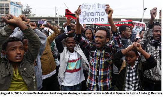 stop killing Oromo People