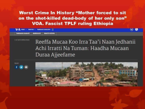 ethiopias-regime-tplfs-crime-against-humanity-a-mother-was-forced-to-sit-on-a-dead-body-of-her-child-killed-by-tplf-forces-and-tortured-7-september-2016-in-dambi-doollo