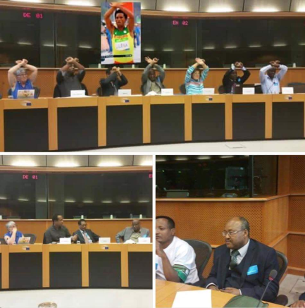 Solidarity with #OromoProtests at European Parliament at the conference on land grabs in Afar state. 2nd September 2016