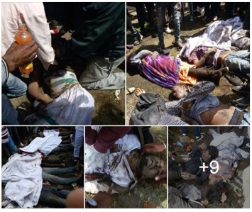 fascist-ethiopias-regime-tplf-is-conducting-genocide-against-oromo-people-at-irreecha-2016-bishoftu-2nd-october-2016