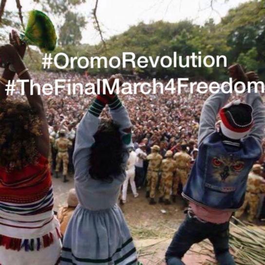 oromorevolution-thefinalmarchforfreedom