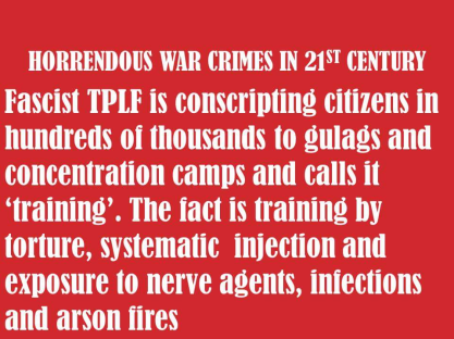 genocide-war-crimes-in-21st-century-is-conducted-by-fascist-tplf-ethiopia-regime