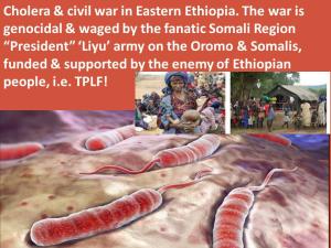 Liyu Police of Ethiopia   OromianEconomist