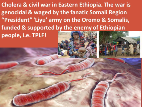fascist-ethiopias-regime-tplf-is-conducting-genocide-in-ethiopia-it-has-segemented-forces-into-agazi-federal-police-liyu-police-defence-forces-etc-all-to-conduct-genocide-in-different-forms