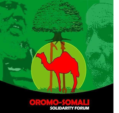 Ethnic cleansing Against Oromo People | OromianEconomist