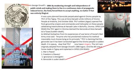 Genocide against the Oromo | OromianEconomist