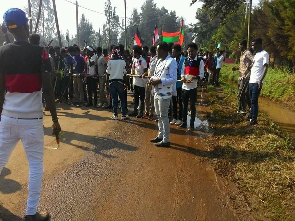 Irreecha Birraa 2017 at Malkaa Booyyee, Jimmaa Abba Jifar, Oromia, 22 October 2017 (6411 ALO)
