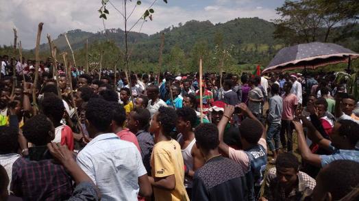 Irreecha Birraa 2017 at Malkaa Booyyee, Jimmaa Abba Jifar, Oromia on 22nd October 2017 (6411 ALO)