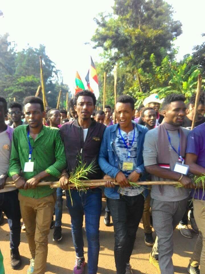 Irreecha Birraa 2017 at Malkaa Booyyee, Jimmaa Abba Jifar, Oromia on 22nd October 2017 (6411 ALO).