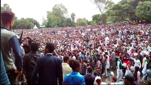 Irreecha Birraa bara 6411 (ALO), Irreecha Birraa Oromoo 2017, Hora Harsadii, Bishoftu Oromia. 1st October 2017 colorfully celebrated with millions Oromo in Bishoftu, Oromia.png