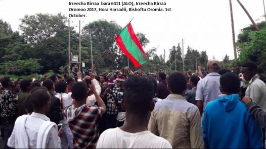 Irreecha Birraa bara 6411 (ALO), Irreecha Birraa Oromoo 2017, Hora Harsadii, Bishoftu Oromia. 1st October