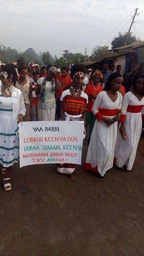 Irreecha birraa 2017, Malkaa Soorii, Iluu, Oromia,  November 2017..png