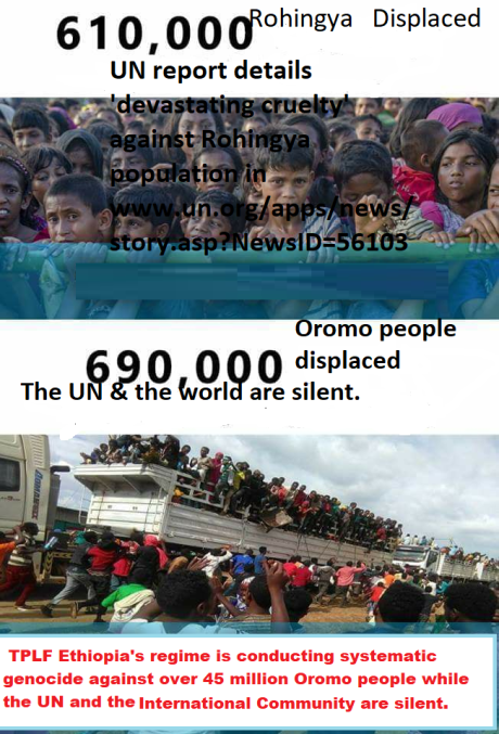 The UN is silent as over 45 million Oromo people are subjected to genocide