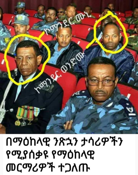 TPLF Ethiopia regime federal security officers conduct mass torture in Kilinto and Maikelawi jails.png