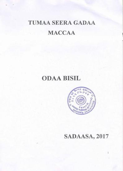 Democratic system   OromianEconomist