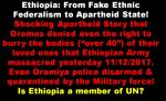 Ethiopia under TPLF rule is Apartheidstate