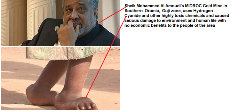 Sheik Mohammed Al Amoudi and MIDROC Gold Mine in   Southern  Oromia,  Guji zone, uses Hydrogen Cyanide and other highly toxic chemicals and caused serious damage to environment and human life.png