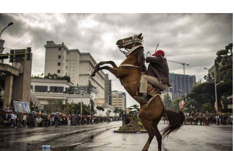 Oromo Horseman in Finfinnee, Hulluuqoo Kormaa, at the event ABO (OLF) leaders welcome, 15th September 2018, victory day..png