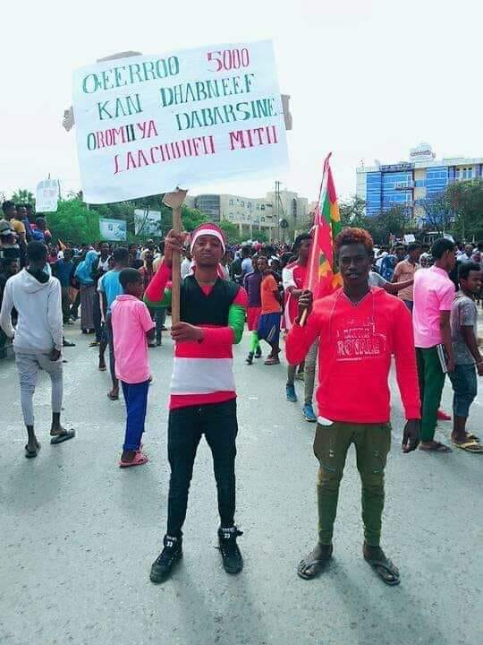 Oromia   OromianEconomist